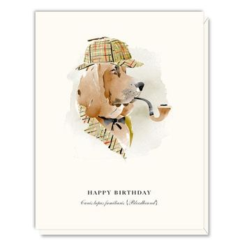 Birthday Bloodhound