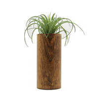 Wood Planter, Modern Planter, Air Plant Holders, Succulent Planter, Unique Planters, Rustic Planter, Indoor Planter, Plant Holders