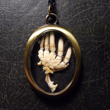 Articulated Mole Paw Skeleton with Claws Ossuary Necklace