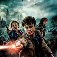 Harry Potter and the Deathly Hallows: (2010) UV Poster 27 x 40 v19