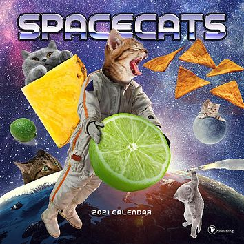 Space Cats Wall