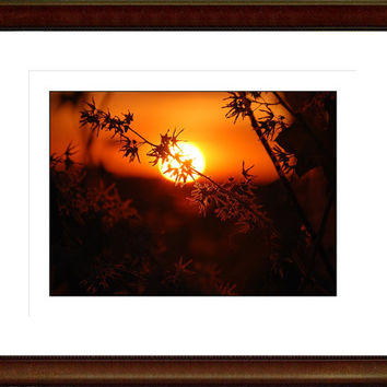 Sunrise Sunset Photography Gifts under 25,copper,sky,glowing,orange,silhouette,summer evening,romantic decor,dramatic landscape,gorgeous