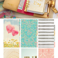 SALE Webster's Pages Color Crush Planner Kit Gold • Gold Color Crush Personal Planner Kit • Gold Planner Purse-size Planner (CCPK001 G)