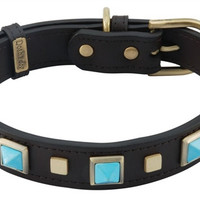 Rock & Roll Tuquoise Dog Collar