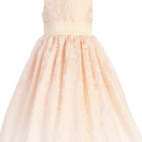 Blush Pink Satin Spring Dress with Burnout Organza Overlay (Baby, Toddler & Little Girls Sizes)