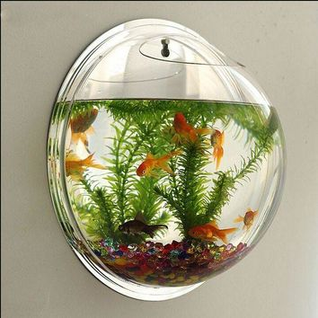 DCCKNQ2 Wall-type mini-aquarium fish bowl