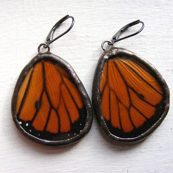 Real Butterfly Wing Earrings Monarch by HouseThatCrowBuilt on Etsy
