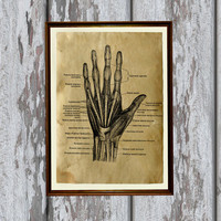 Hand print Anatomy illustration gothic art Antique parchment Antiqued decoration 8.3 x 11.7 inches