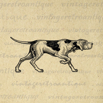 Printable Image Antique Dog Download Illustration Digital Graphic Vintage Clip Art for Transfers Printing etc HQ 300dpi No.1407