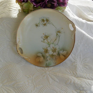 Vintage Handpainted Plate Cottage Chic