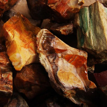 """1/4 lb PETRIFIED WOOD Raw Rough Stone Chunks ~ 1"""" to 2"""" Crystal Healing Mineral ~ Jewelry & Crafts"""