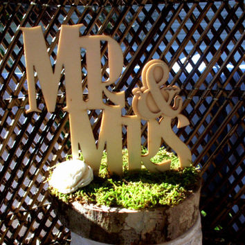Mr and Mrs cake topper | Rustic cake topper | Wood cake topper | Moss cake topper | Wedding cake topper | Rustic wedding