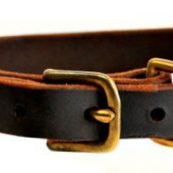 "Dean and Tyler ""B and B"", Basic Leather Dog Collar with Strong Brass Hardware - Brown - Size 12-Inch by 3/4-Inch - Fits Neck 10-Inch to 14-Inch"