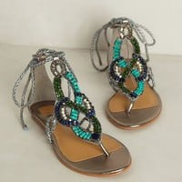 Aldine Sandals by Dolce Vita Dark Silver 8.5 Sandals