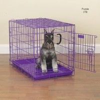 ProSelect Fold-Down Dog Crate