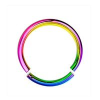 BodyJ4You 16G Rainbow Anodized Segment Ring