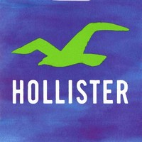 Hollister Gift Card $50