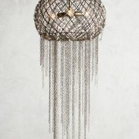 Belfry Chandelier by Anthropologie in Black Size: One Size Lighting