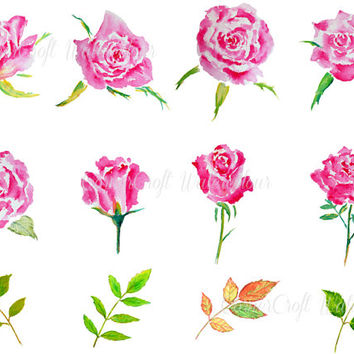 hand painted watercolour pink roses and leaves digital clipart instant download scrapbook wedding card, greeting card, wall art watercolor