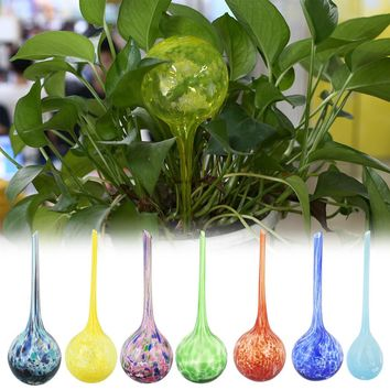 Glass Globes Flower Bonsai Automatic Watering Device Garden Irrigation Tools