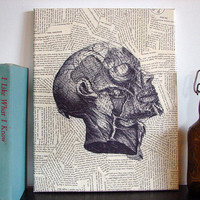 Canvas Art Prints Vintage Anatomical Drawing by Stoic on Etsy