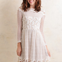 Teagan Lace Dress