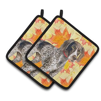 German Shorthaired Pointer Fall Pair of Pot Holders BB9902PTHD