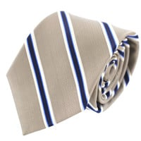 Tok Tok Designs Men's Necktie (N49, 100% Silk)