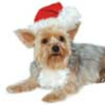 Santa Hat for Dogs and Cats