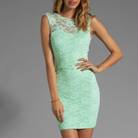 Donna Mizani Passion Lace Boat Neck Dress in Mint from REVOLVEclothing.com