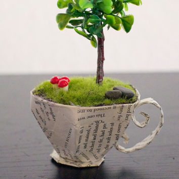 Fairy Garden in a Teacup