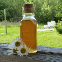 4oz Jar of Honey Tennessee Wildflower 1/4 lb Antique Style Jar Raw Unfiltered Honey Wedding Favor