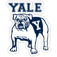 'Yale Bulldog' Sticker by beanbop