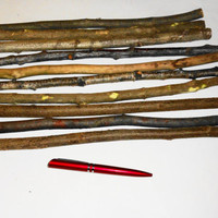 Decorative Twigs Branches. Wood Tree Twigs. Natural Twig Bundle. Wooden Tree Sticks Twigs. Dry Wood Branch. Rustic Twigs