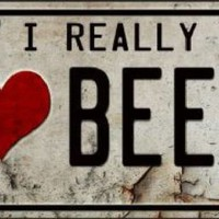 I Really Heart Beer Car Truck License Plate Tag