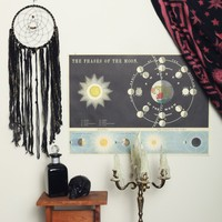 Phases of the Moon Poster - Interior at Gypsy Warrior