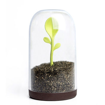 Sprouting Scoop Jar | Coffee and Tea Container