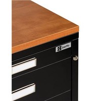 Save On Discount Bieffe BF Line Melamine Top for Flat File & More at Utrecht
