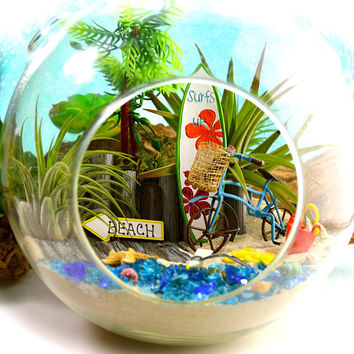 "Boardwalk Surfboard Terrarium Kit ~7"" Air Plant Terrarium Kit ~ Seagull ~ Beach Bike ~ Beach Sign Choice ~ Coastal Living Beach Decor ~ Gift"