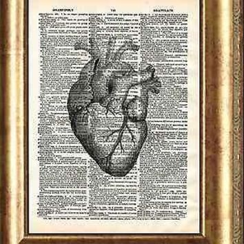 Heart Art Print on Antique Book Page Vintage Illustration Medical Anatomy