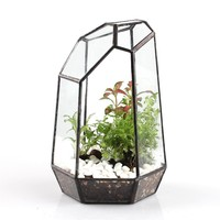 Polyhedron Irregular Glass Geometric Terrarium Box