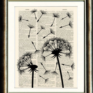 Dandelion Seed head 3 - vintage book page print image on a page from an Upcycled 1800s Dictionary Buy 3 get 1 Free. Teacups