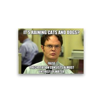 False: It's raining cats and dogs? Dwight Schrute Magnet - Michael Scott Magnet - The Office TV Show Magnet - Dwight Schrute Magnet