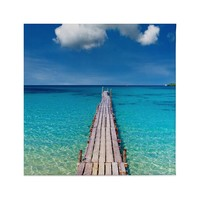 Ocean Pier Canvas Prints Wall Art Framed Decor Living Room Bedroom