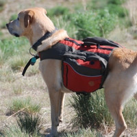 Dog Backpack Small Red
