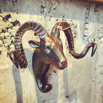 RAM HEAD WALL HOOK