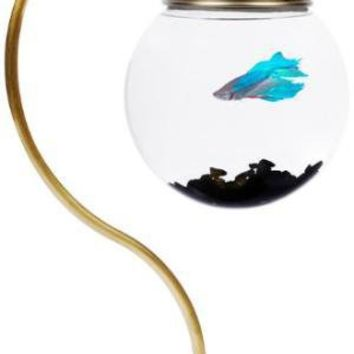[out of stock]  Hanging Aquarium- OpulentItems.com