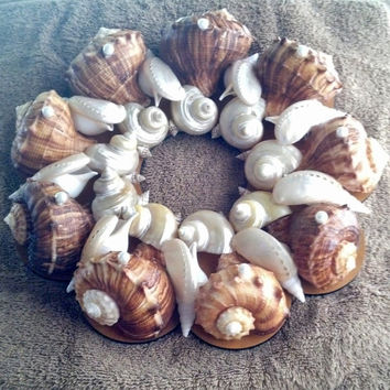 SeaShell Wreath 13 -- Rapanas Pearlized Turbos Abalones Tibias, Beach Theme, Coastal Theme, Nautical Theme, Wall Decor, Decorative Wreath