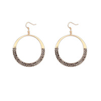 Stylish Earrings [4920477636]