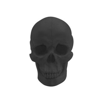 The Darwin | Faux Human Skull | Black Resin